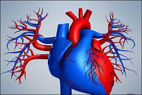 http://s10.picofile.com/file/8393124034/heart_jensi.jpg