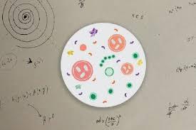 مدلسازی پدیده های زیستی پیچیده به کمک ریاضیات