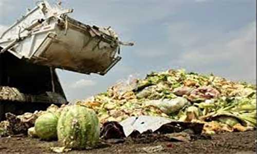 آمارهای تکاندهنده فائو ازضایعات غذا در ایران