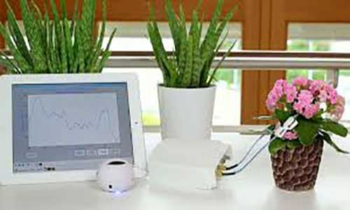 دستگاهی برای شنیدن درد دل گیاهان!