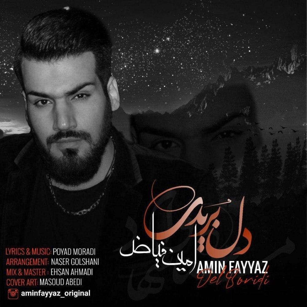 دانلود آهنگ جدید امین فیاض به نام دل بریدی